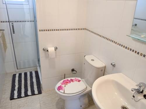 Ground Floor Shower / WC