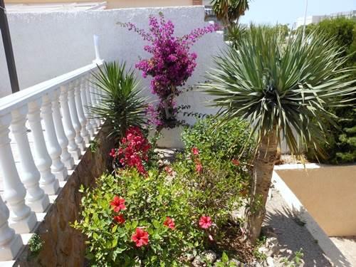 Part Of The Lovely Gardens